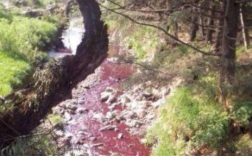 blood river mexico, river turns red blood in mexico, rivers turns red in mexico, red river in Mexcio, pollution turns river red in Mexico, mexico red river may 2014, Blood red river in Mexico - May 2014