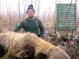 Largest grizzly bear shot in Alaska, largest bear hunt, what size is the largest bear ever killed, largest grizzly ever killed, biggest grizzly ever killed, size of largest bear ever killed, what is the largest bear ever killed, This is a picture of the largest bear EVER killed. Photo: Instagram, Largest grizzly bear shot in Alaska, where was shot the largest bear ever, largest bear ever killed photo, photo of the largest bear ever killed, largest bear ever hunt
