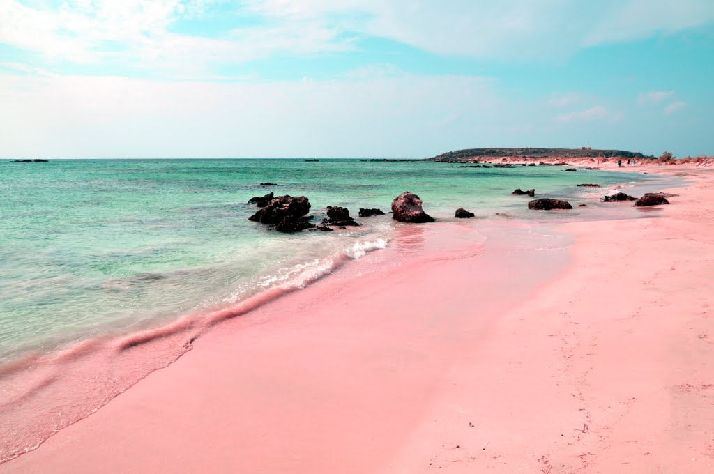 Pink beach, Pink beach photo, pink sand, pink sand photo, pink beach around the world, amazing nature phenomenon: pink beach around the world, amazing natural phenomenon: pink beaches around the world, earth oddity: pink beach, earth strange things: pink beach, where can i find pink beaches in the world, what is the location of pink beach around the world, where are pink beaches around the world?, amazing nature oddity: pink beach around the world, Pink beach and sand on Elafonissi beach in Crete (Greece). Photo by Jan-Erik Larsson, Pink Beach, Pink Beach pics, Pink Beach video, Pink Beach photo, pink sand, pink sand photo, pink sand pics, pink sand beach video, pink sand beach pics and video