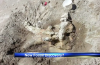 Stegomastodon Elephant Butte - June 2014, Was a giant fossil of Stegomastodon discovered by students at Elephant Butte? - June 2014. Photo: KRQE, amazing fossil discovered at elephant butte june 2014, giant fossil of Stegomastodon discovered at elephant butte june 2014, elephant butte giant fossil june 2014, giant fossil discovery june 2014, us giant fossil discovery june 2014, fossils discovered in the usa in June 2014, amazing giant fossil of Stegomastodon discovered at Elephant Butte in June 2014