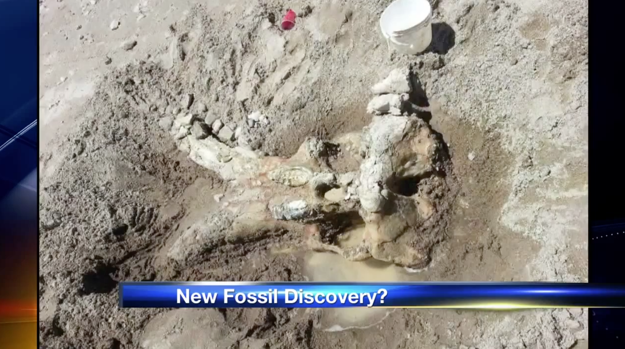 Major Prehistoric Discovery At Elephant Butte: Students ...