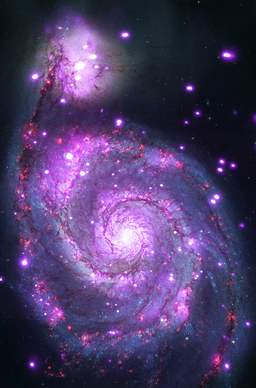 Whirlpool Galaxy, Whirlpool Galaxy photo, Whirlpool Galaxy oddity, Whirlpool Galaxy mystery, Whirlpool Galaxy is full of Black Holes, Whirlpool Galaxy is Dotted with Black Holes, space oddity, space anomaly: Whirlpool Galaxy is Dotted with Black Holes, Space mystery: Why is the Whirlpool galaxy dotted with black holes?Photo: The Whirlpool galaxy seen in both optical (red, green and blue) and X-ray (purple) light. Image Credit: X-ray: NASA/CXC/Wesleyan Univ./R.Kilgard, et al; Optical: NASA/STScI