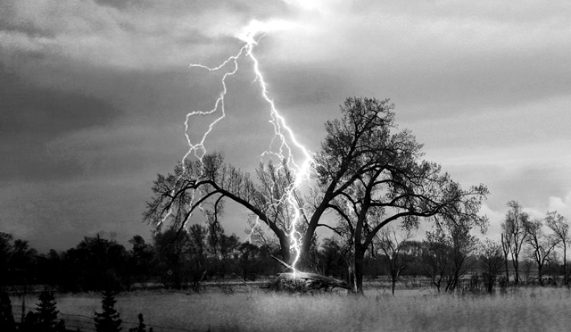 Lightning striking tree caught on camera, Tree explodes after being struck by a terrifying lightning, Tree explodes after being struck by a terrifying lightning video, amazing lightning video, best lightning video: tree explosion after lightning strike, tree explosion after lightning strike, lightning strikes and tree explodes video, video of tree explosion after lightning strikes, lightning strikes and explodes tree, tree explodes after lightning strike, lightning strike explodes tree, tree lightning explosion video, video of exploding tree after lightning strike, amazing video of tree and lightning strike, lightning strikes tree video june 2014, A security camera at a state park in Saratoga Springs caught lightning directly striking a tree. Watch the dramatic video,