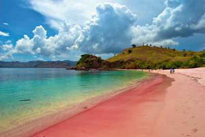 pink beaches around the world, Another example of pink beach on Komodo Island in Indonesia. Photo by Skyrock, amazing pink beach around the world, earth oddity, earth strange phenomenon, Another example of pink beach on Komodo Island in Indonesia. Photo by Skyrock, Pink Beach, Pink Beach pics, Pink Beach video, Pink Beach photo, pink sand, pink sand photo, pink sand pics, pink sand beach video, pink sand beach pics and video