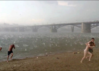Weather Anomaly: Swimmers and beachgoers running for their lives during a violent hailstom in Novosibirsk, Siberia on July 12 2014. Photo: Ruslan Sokolov, Novosibirsk russia beach hailstorm july 2014, Крупный град на городском пляже в Новосибирске 12 июля 2014 г, Swimmers waded out of the water covering their heads. Picture: Ruslan Sokolov, hailstorm beach russia, hail storm russia beach july 2014, hailstorm Novosibirsk july 2014 video, video hailstorm Novosibirsk july 12 2014, extreme weather: hailstorm surprises beachgoers in Novosibirsk july 12 2014 video, video of Novosibirsk hailstorm beach july 2014, Massive Hailstorm Surprises Russian Beachgoers In Novosibirsk (VIDEO)