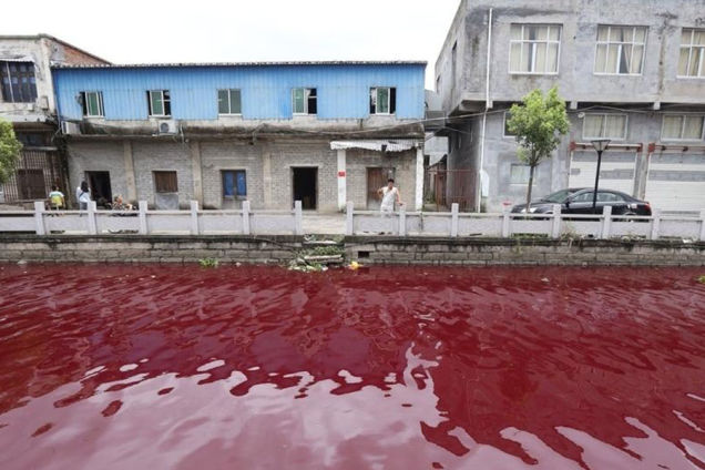 This Chinese river suddenly and mysteriously turns red overnight on July 25 2014., chinese river turns blood red july 25 2014, chinese river turns blood red july 25 2014 photo, video chinese river turns blood red july 25 2014, blood red river china july 2014, extreme pollution: blood red river in china july 2014, china rivers blood red july 2014 photo, River in China mysteriously turns blood-red overnight, Mystery: Chinese River Turns Blood Red Overnight, Mystery: Chinese river turns blood red overnight on July 25 2014! Locals are baffled as nobody knows the cause of this strange and mysterious event yet, MYSTERIOUS BLOOD RED RIVER IN CHINA OVERNIGHT