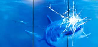"shark attack, shark attack video, shark attack video spy museum, best things to do at international spy museum, international spy museum aquarium, fake shark attack at spy museum video, international spy museum shark attack, ""Exquisitely Evil"" at the International Spy Museum, spy museum attraction, best attraction at spy museum, spy museum best attractions: shark attack video, shark attack spy museum video, amazing shark attack, strange installations in internation spy museum, international spy museum strangest attraction, cool things to do at spy museum"