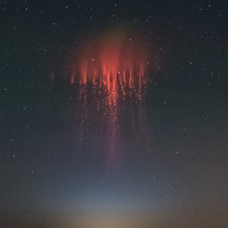 eerie red sprite looking like jellyfish over new mexico on july 18 2014, An alien jellyfish? This red sprites photographed over New Mexico in July 2014 looks like a giant jellyfish coming from outer space. Photo: Harald Edens, red sprite, red sprite photo, red sprite photo july 2014, red sprite photo july 2014 new mexico, red sprite photo NM july 2014, red sprite photo phenomenon new mexico july 18 2014, space weather: red sprite new mexico july 18 2014, sprite photo 2014, amazing space phenomenon: red sprites photo july 2014 usa, sprites photo over thunderstorms clouds in New Mexico july 18 2014, july 2014 sprite photo, photo of red sprite new mexico july 2014, Eerie space weather phenomenon: This red sprite was captured by Harald Edens above thunderstorms in New Mexico on July 18 2014, sprite, red sprite, red sprite photo, red sprite photo new mexico july 2014, red sprite picture, space weather: red sprite new mexico july 2014, latest photo of red sprite july 2014, space phenomenon photo, mysterious space phenomena, mysterious red sprites july 2014, photo gallery red sprites july 2014 new mexico