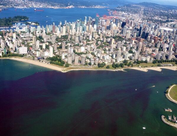 English Bay Turned Red Due To Algae bloom on July 9 2014 in Vancouver. Photo: Chad Dey, Video, English Bay, Burrard Inlet, Burrard Inlet Algae, Burrard Inlet Red, Burrard Inlet Red Water, English Bay Algae, English Bay Red, English Bay Red Water, Red Algae Burrard Inlet, Red Algae English Bay, Red Algae Vancouver, Red Tide Bloom Vancouver, Vancouver, Vancouver Algae, Vancouver Red Water, Vancouver Water Red, Canada British Columbia News