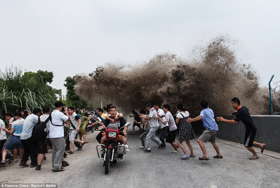Tidal Bores, Tidal Bore, Tidal Bore 2014, Tidal Bore photo, Tidal Bores At Qiantang River, Tidal Bores At Qiantang River photo, Tidal Bores At Qiantang River video, Tidal Bores At Qiantang River, Tidal bores forming at Qiantang River in China are the largest in the world, Tidal Bore china 2014 photo and video