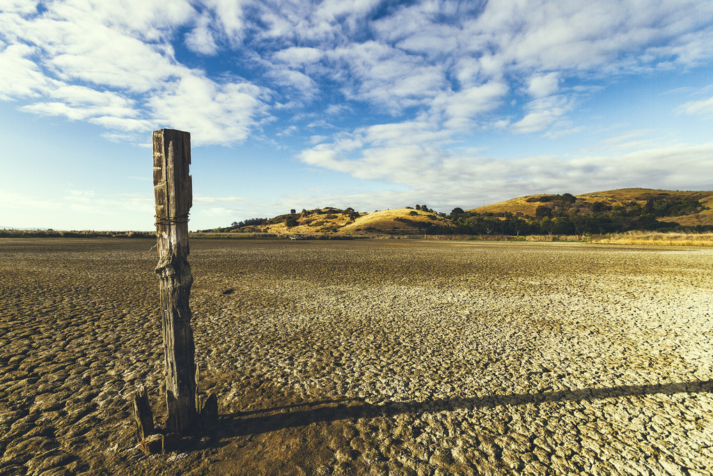 At Beal's Point on Folsom Lake in Northern California the water has almost disappeared. We are in the midst of a severe drought and for much of the Sacramento area this is it's water source, Effects of the drought on Coyote Hill. The earth is cracked. It's almost a desert!, california, california drought, california drought explained, why california drought, meaning of california drought
