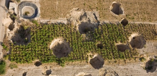 Vicious: Example of crops beeing destroyed by these giant sinkholes around the Dead Sea! Photo: Foeme