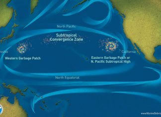 garbage patch north pacific ocean, garbage patches north pacific ocean, how big are garbage patches north pacific ocean, what are garbage patches north pacific ocean, where are garbage patches, pacific garbage patches