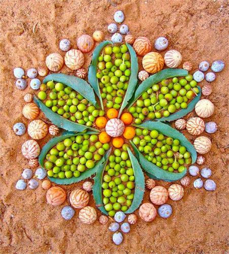 Mandala, danmala, Mandala danmala, madala flowers and fruits, Mandala danmala by Kathy Klein