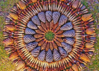 Mandala, danmala, Mandala danmala, madala flowers and fruits, Mandala danmala by Kathy Klein