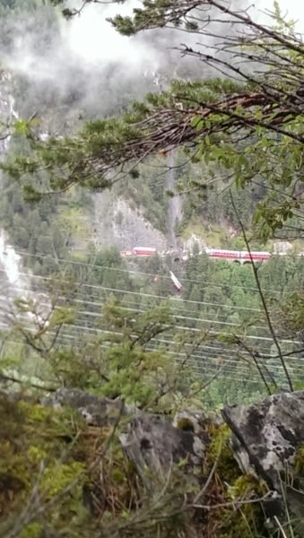 It is pretty rare for Switzerland: Terrifying train derailment in Graubünden, Switzerland, landslide train switzerland, swiss train derails after landslide, train derails in Switzerland, train switzerland alps, A landslide is at the origin of this train derailment in Switzerland. Photo: 20min, train derails in swiss alps august 2014, A train wagon is hanging in trees after a landslide triggered a train derailment between Chur and St-Moritz.