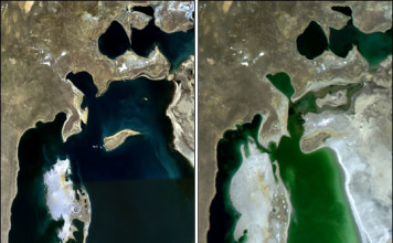 The Aral sea between 1989 and 2003. The Lake has lost more than 10% of its surface. Photo: Nasa Earth Observatory, aral sea, aral sea photo, aral sea desertification, aral sea desertification, aral sea irrigation