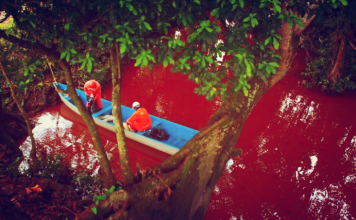 blood red river, blood red river mexico, blood red hondo river, blood red hondo river photo, photo of blood red hondo river, blood red hondo river mexico, The Mexican Hondo river has turned blood red after a crude oil spill. Photo: AP