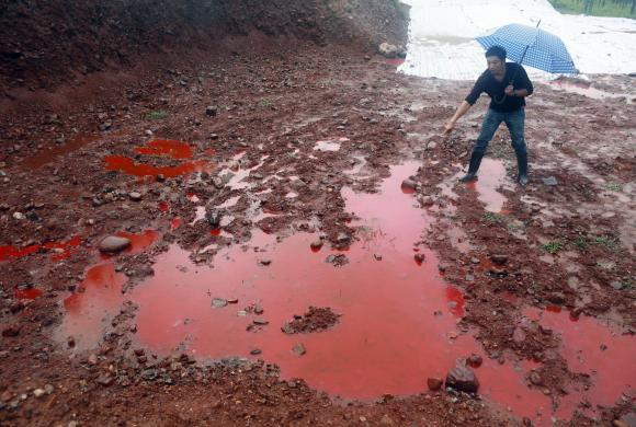 red water, red water photo, red water pollution, red water contamination, water pollution photo, bllod red water, The water and the soil turned red after a dye company released its industrial wastewater on September 15 2014. Photo: REUTERS/Stringer