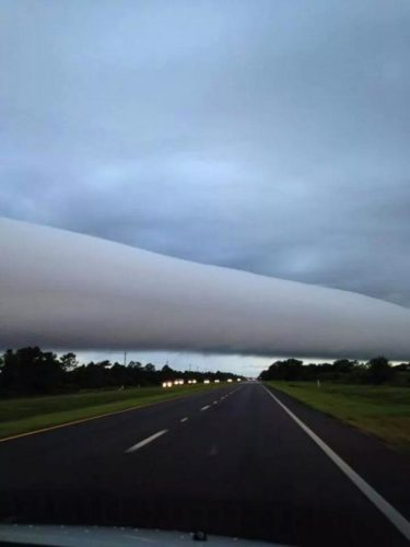 cloud pictures, cloud photos, roll clouds, roll cloud, cloud pictures, cloud photo, roll cloud florida, roll clouds venice florida 2014, roll clouds over venice florida september 2014  photo, roll clouds photo, roll clouds image, roll cloud, arcus cloud, what is a roll cloud, Picture of roll clouds over venice florida on September 23, 2014 by Catherine Clark Poynter Elfers, Amazing cloud pictures: Photo of roll clouds over venice florida on September 23, 2014 by Colleen Adams