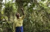 Forest Man, Forest Man documentary, Forest Man documentary film, Forest Man on majuli island, majuli island forest man, Forest Man: A documentary film about a man that planted hundreds of trees to save his Majuli Island from erosion.