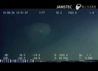 sagami mysterious crature, sagami bay underwater creature video, mystery underwater creature, underwater creature video, underwater creature japan video, smystery underwater creature japan, What is this mystery creature at the bottom of Sagami Bay?