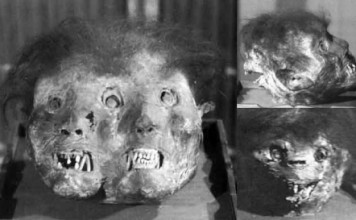 Three-faced demon mummy, Three-faced demon at Zengyōji (善行寺) temple, demon mummies, demon mummies japan, japanese demon mummies in Japan buddhist temples, buddhist demon mummies photo, picture of demon mummies japan, Three-faced demon at Zengyōji (善行寺) temple, Three-faced demon mummy picture