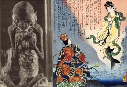 mermaid, mummy, mermaid mummy, mummified mermaidmermaid mummy japan, mermaid picture, mermaid video