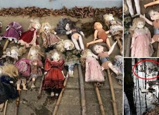 porcelain dolls alabama swamp, mystery porcelain dolls alabama swamp, mysterious dolls alabama swamp, dollsa discovered in alabama swamp