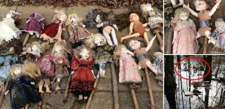 porcelain dolls alabama swamp, mystery porcelain dolls alabama swamp, mysterious dolls alabama swamp, dollsa discovered in alabama swamp