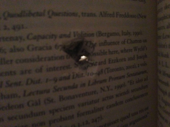 Florida state university shooting november 20 2014, redditor saved by books at Florida state university shooting november 20 2014