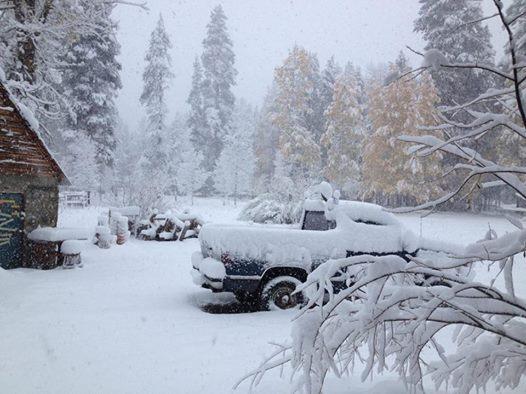 snow california november 2 2014, snow california november 1 2014, snowfall california november 2014, snow storm california november 2 2014, weather anomaly snow california november 2 2014
