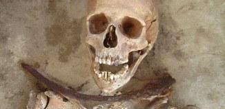 vampire poland cholera, burial site vampire poland, polish vampire, vampire in poland, vampire poland pics, pics of vampire in poland, polen vampire, vampire pologne choléra, vampire mort du cholera, cholera out break vampire