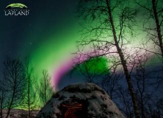 pink aurora, pink aurora photo, pink aurora pics, pink aurora pictures, pink aurora phenomenon, nitrogen fringe aurora, pink nitrogen fringe aurora, nitrogen fringe, pink aurora sweden