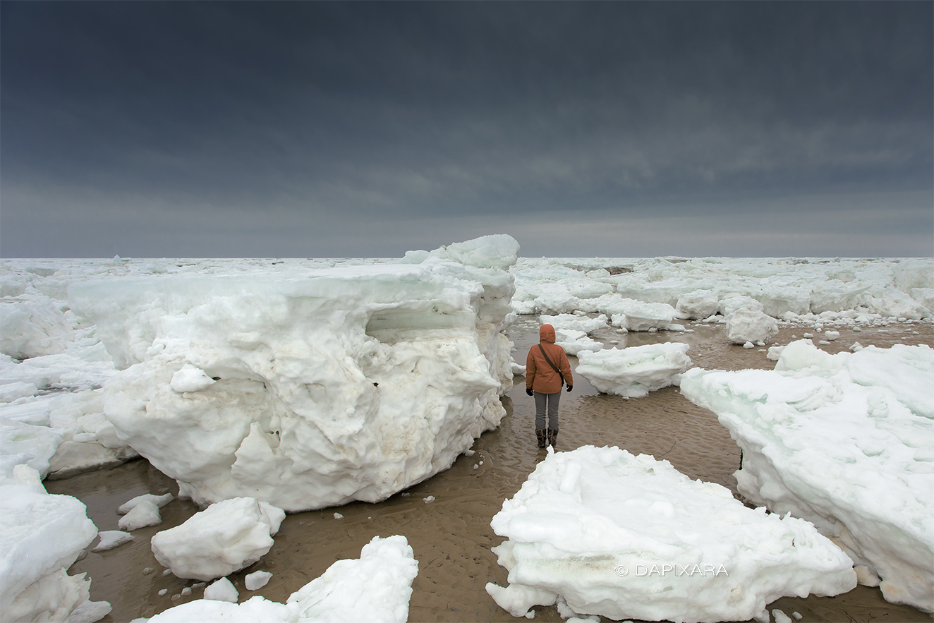 Giant icebergs are washing up on cape cod strange sounds - What is a cape cod ...