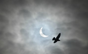 solar eclipse picture march 20 2015, solar eclipse picture march 20 2015 birmingham, solar eclipse picture march 20 2015 uk