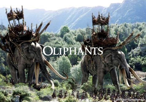 oliphants, mammoth size, what is the size of a mammoth, what is the size of a woolly mammoth, woolly mammoth size comparison, woolly mammoth size, what is the size of the wooly mammoth, size of wooly mammoth, size comparison woolly mammoth
