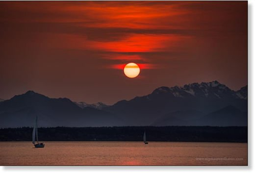 Siberian wildfires cause brilliant sunsets in US, Siberian wildfires cause brilliant sunsets around Seattle, intense sunset seattle siberia fire, fiery sunset us west coast siberian fires, siberian fires create eerie sunsets in seattle and BC