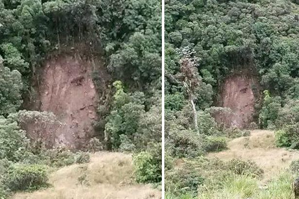 jesus face landslide colombia, face of jesus landslide, landslide jesus colombia april 2015, face of jesus appears in landslide scar april 2015, jesus face landslide colombia 2015, The face of Jesus appeared in a landslide scar in Colombia and is attracting hundreds of visitors.