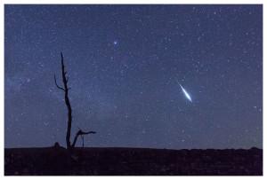 lyrids meteor shower 2015, lyrids meteor shower 2015 photo, photo of lyrids meteor shower 2015, fireball lyrids zorro 2015, gif zorro fireball