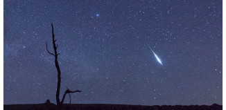 lyrids meteor shower 2015, lyrids meteor shower 2015 photo, photo of lyrids meteor shower 2015, fireball lyrids zorro 2015, gif zorro fireball