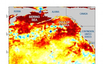 mystery blob pacific ocean, mysterious blob temperature anomaly pacific ocean, california drought triggered by blob in pacific ocena, pacific ocean blob enhances california drought, california drought blob pacific ocean, pacific ocean blob temperature anomaly, temperature anomaly pacific ocean