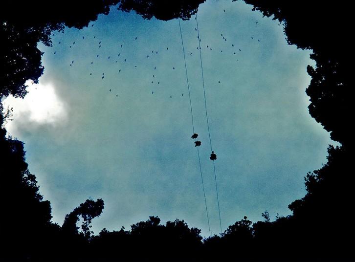 El Sótano de las Golondrinas-the Cave of Swallows, pictures, deepest sinkhole in Mexico, El Sótano de las Golondrinas,  The Cave of Swallows, El Sótano de las Golondrinas mexico, The Cave of Swallows mexico, deepest sinkhole in Mexico El Sótano de las Golondrinas-the Cave of Swallows, cave of swallows sinkhole, El Sótano de las Golondrinas sovacon