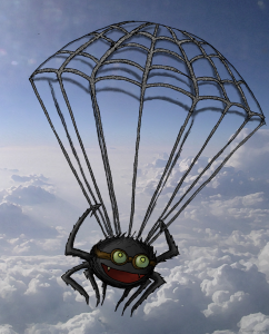flying spider chicago, flying spider phenomenon, flying spider chicago video, flying spider chicago phenomenon, flying spider chicago phenomenon