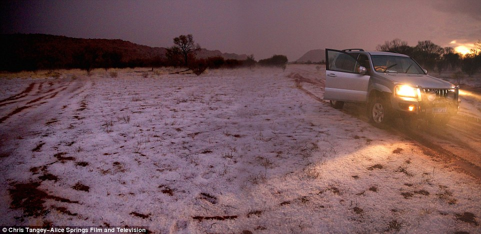 alice springs hailstorm june 2015, hailstorm alice springs desert australia, hail alice springs desert june 2015, hail blankets alice springs photo, hail blankets alice springs video june 2015