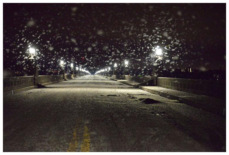 mayfly pennsylvania, mayfly pennsylvania bridge, mayfly pennsylvania block bridge, mayfly apocalypse pennsylvania bridge june 2015