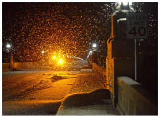 mayfly pennsylvania, mayfly pennsylvania bridge, mayfly pennsylvania block bridge, mayfly apocalypse pennsylvania bridge june 2015