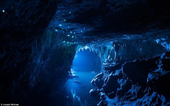 glow worm new zealand, glow worm cave new zealand, alien glow worm cave nz, glow worm cave nz, glow worm nz