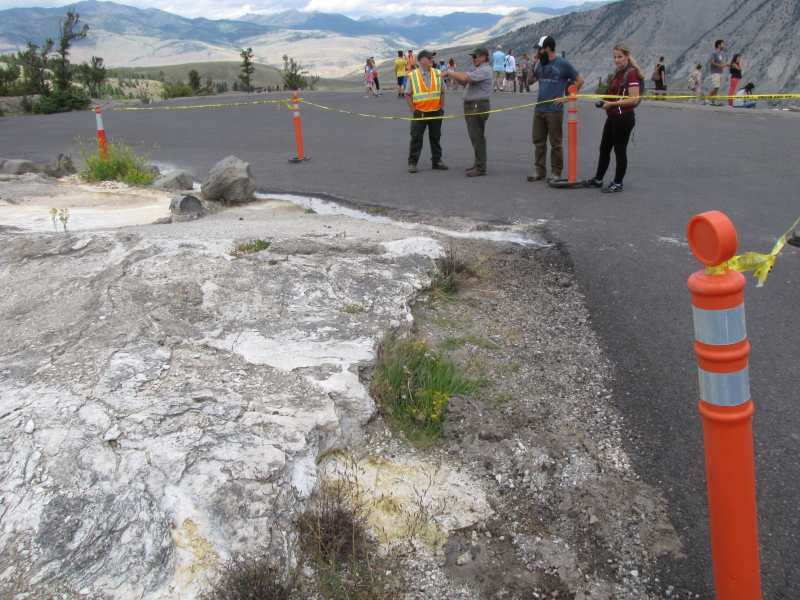 thermal activity road closed yellowstone july 2015, yellowstone thermal activity july 2015, road close in yellowstone due to new thermal acticivty, new thermal activity closes road in yellowstone national park, Road in Yellowstone National Park closed to vehicles due to thermal activity,