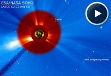 sun swallows comet, comet swallowed by sun video, sun swallows comet august 2015, sun swallows comet video august 2015, soho records comet swallowed by sun, soho sun swallows comet video, Soho has recorded a comet being swallowed by the sun on August 28 2015. Photo: NASA